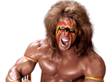 *Ultimate Warrior2_m*
